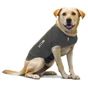 Dog Thunder Shirt Size Small